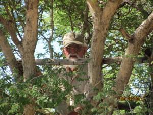Emanuel in einem Baumsitz auf Farm Hazeldene