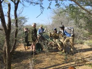 Bergung aus dem Bush_Farm Hazeldene_Namibia