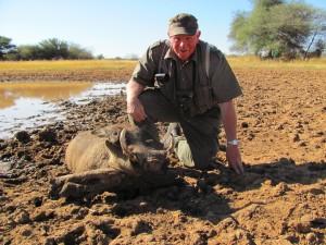 Kapitaler Warzenschweinkeiler_Farm Hazeldene_2012