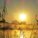 Sonnenaufgang_Okawango