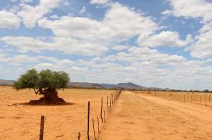 Landschaft auf Farm Hazeldene