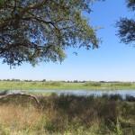Okawango im Buffalo Game Park