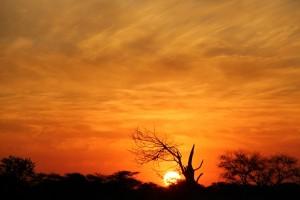 Sonnenuntergang2_